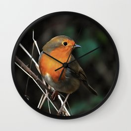 Being Bright On A Dull Day Wall Clock