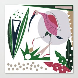 the red bird Ibis Canvas Print