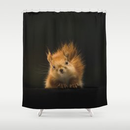squirrel in the dark Shower Curtain