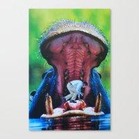hippo Canvas Prints featuring Hippo by John Turck