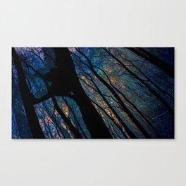 Sitting Still  Canvas Print