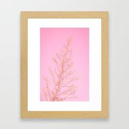 Seeds of Weeds in Pink Framed Art Print