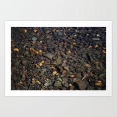 pond rocks Art Print