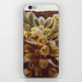 Cholla Cactus Garden XIV iPhone Skin