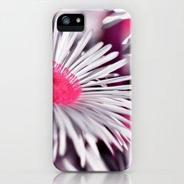 Marquerite white pink 01 iPhone Case