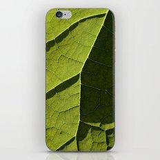 Leaf Veins I iPhone & iPod Skin