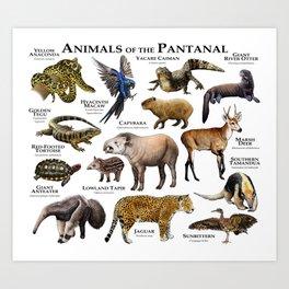Animals of the Pantanal Art Print