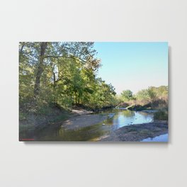 Where Canoes and Raccoons Go Series, No. 23 Metal Print