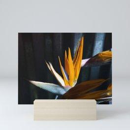roberta price Mini Art Print
