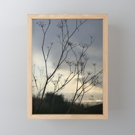 Winter Fennel_02 Framed Mini Art Print