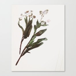 Flowing Lovely Floral Canvas Print