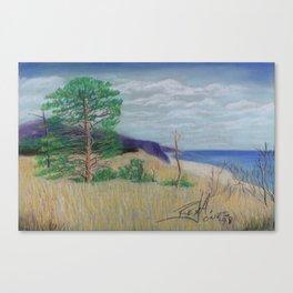 Sleeping Bear Dunes Canvas Print