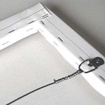 Caged LA Canvas Print