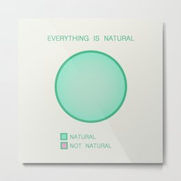 Everything is Natural Metal Print
