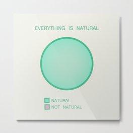 Everything is Natural Metal Print