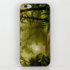 Misty Woodland Lane iPhone & iPod Skin