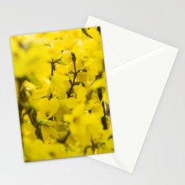 Yellow spring blooming Stationery Cards