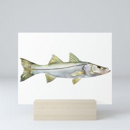 Snook Mini Art Print