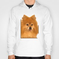pomeranian Hoodies featuring Cute Pomeranian dog by Bruce Stanfield