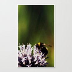 In the green light Canvas Print