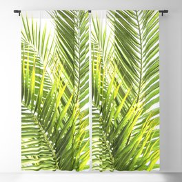 Palm leaves tropical illustration Blackout Curtain