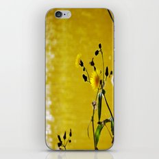 Kissed by the sun iPhone & iPod Skin