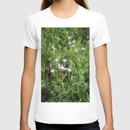 Canada Thistle T-shirt