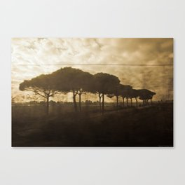 The Italian Traveler Canvas Print