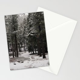 Carol Highsmith - Snow Covered Trees Stationery Cards