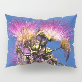 French flowering mimosa Pillow Sham