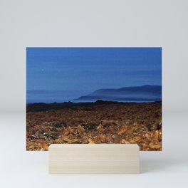 Seaweed Beach at Dusk Mini Art Print