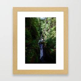 Bushkill Falls Framed Art Print