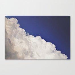 NAEMI Canvas Print
