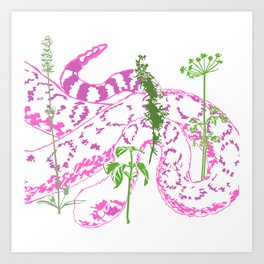 Diamondback Hiding In Herbal Paradise Art Print