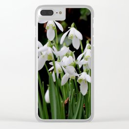 Snowdrops in the Spring Clear iPhone Case