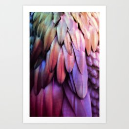 PARROT FEATHERS RAINBOW Art Print