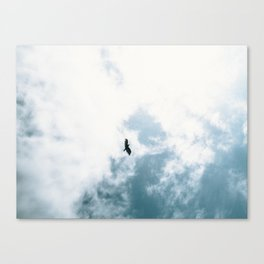 Bird Flying Canvas Print
