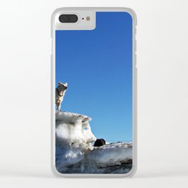 Riding the Starship Enterprise Clear iPhone Case