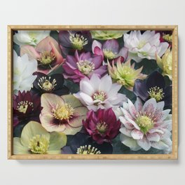 Christmas Spring Flower Floral Flora Eclectic Mix Color Serving Tray