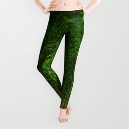 The gardens of the castle of Fontainebleau Leggings