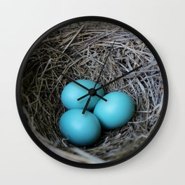 New beginnings nesting Wall Clock