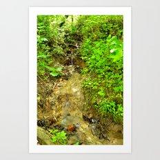 Small waterfall Art Print