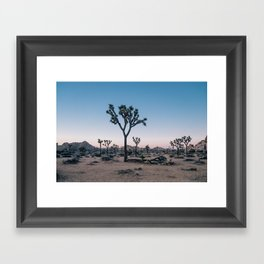 Joshua Tree at Sunset Framed Art Print