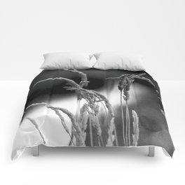Wheat in Black and White Comforters