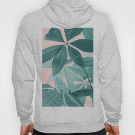 Pachira Aquatica #5 #foliage #decor #art #society6 Hoody