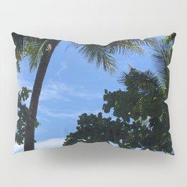 Queensland Australia beach Pillow Sham