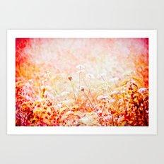 Daucus Carota Art Print