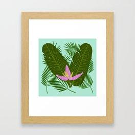 Tropical banana flower Framed Art Print