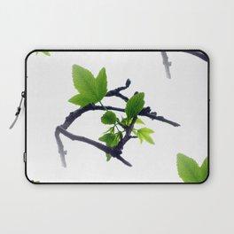 New leaves on the Sweetgum Tree - Seamless Laptop Sleeve