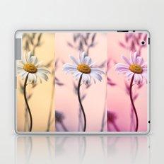 Trio Daisies Laptop & iPad Skin